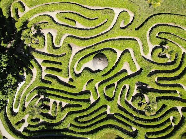 A bird's-eye view of a maze